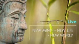 New Mind Week #14
