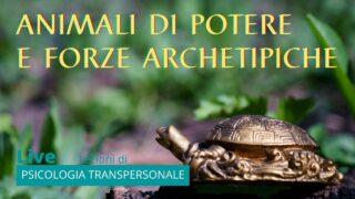 Animali di Potere e Forze Archetipiche: come utilizzarli per guarire e migliorarsi