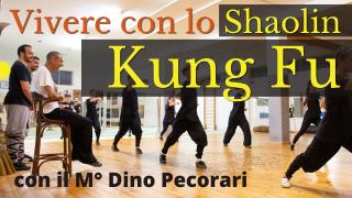 IS_Dino Pecorari