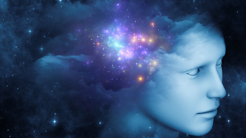 mind e space
